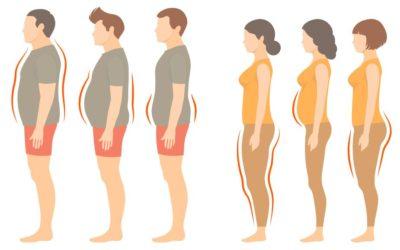 La influencia del metabolismo sobre tu peso