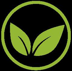 Nutrición basada en plantas icono